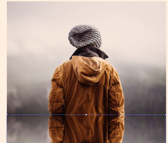 reflect Adobe Illustrator